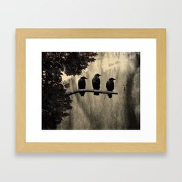 Three Like Minded Crows Framed Art Print