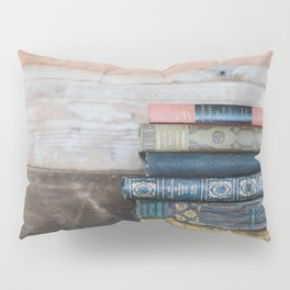 Reading day Pillow Sham