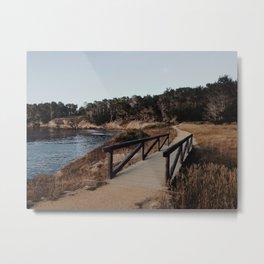 Point Lobos Carmel CA Metal Print