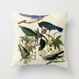 362 I. Yellow billed Magpie 2. Stellers Jay 3. Ultramarine Jay 4. Clark's Crow Throw Pillow