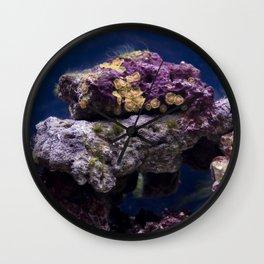 Fish Tank Wall Clock