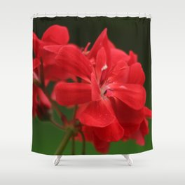 Red Geranium Flowers Shower Curtain