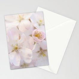 Ornamental Cherry Blossom Stationery Cards