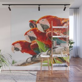 Red macaws Wall Mural
