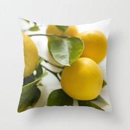 Branch of Lemons Throw Pillow