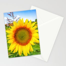 Fields of sunflowers on the hills of Marche Region on the Adriatic Sea, Italy Stationery Cards