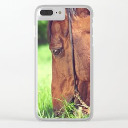 horse collection. spring Clear iPhone Case