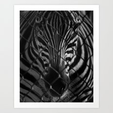 Bars and Stripes Art Print