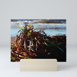 Sea Grass on the Beach Mini Art Print
