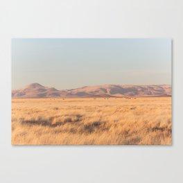 Home on the Range II Canvas Print