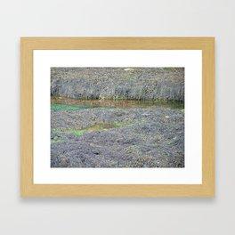 Boscastle harbour at low tide Framed Art Print