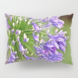Agapanthus (African Lily) Pillow Sham