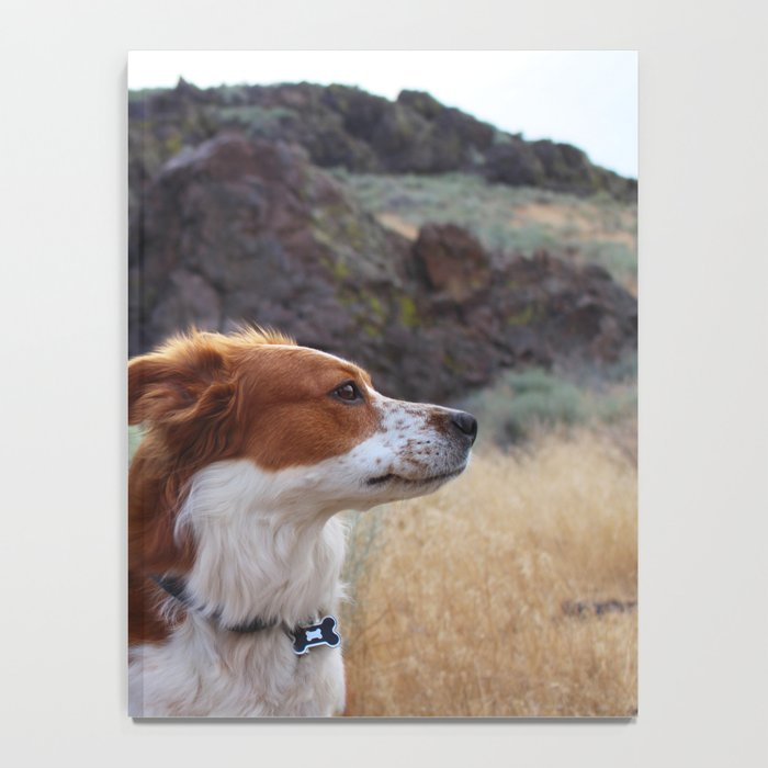 Day Dreaming Dog Notebook