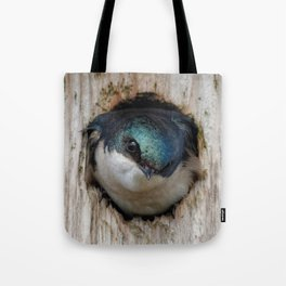 Meeting the New Nestbox Homeowner Tote Bag