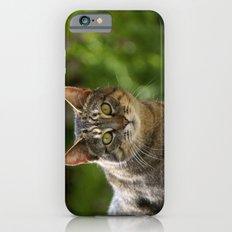 Nellie Grey 001 iPhone 6s Slim Case