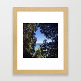 Window Trees Framed Art Print