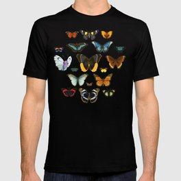 Entomology Vintage Butterfly T-shirt