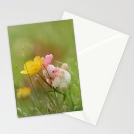 Journeying Rabbit V Stationery Cards