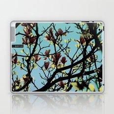 Pure Love Laptop & iPad Skin
