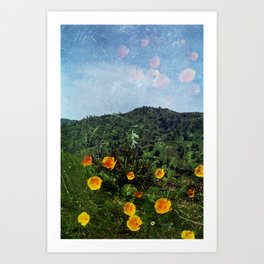 MM 314 . Poppy x Green Dunes Art Print