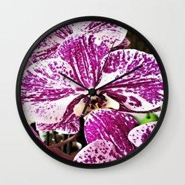 purple orchidee Wall Clock
