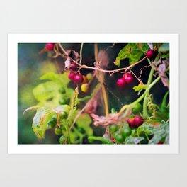 frutos silvestres con colores vistosos en verde y morados Art Print
