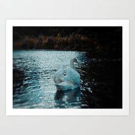 The Swan (2012) Art Print