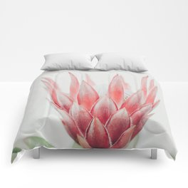 King Protea flower Comforters
