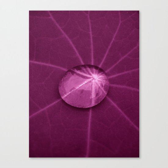 big drop Canvas Print