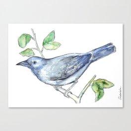 Watercolor of a bluebird Canvas Print