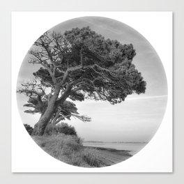 Desert Island Disc Canvas Print
