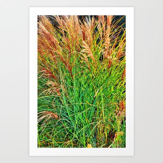 Golden Sea Grass Art Print