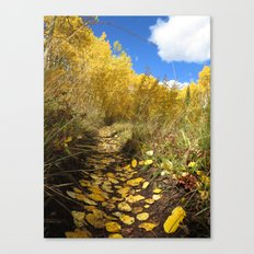Yellow Carpet Canvas Print