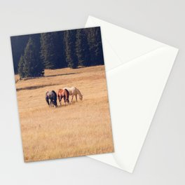 Montana Collection - Horses on the Ranch Stationery Cards