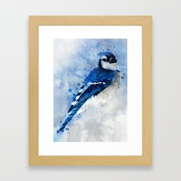 Watercolour blue jay bird Framed Art Print