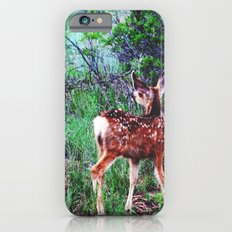 Descry Slim Case iPhone 6s