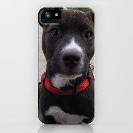 Cheka iPhone Case