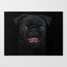 gimme a smile Canvas Print
