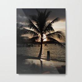 Palm @ Sunset Metal Print