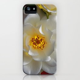 Icebergs Bliss iPhone Case