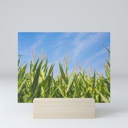 Corny Mini Art Print