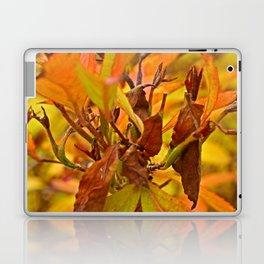 Autumn colour Laptop & iPad Skin