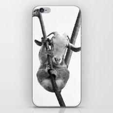 Kolpretto iPhone & iPod Skin