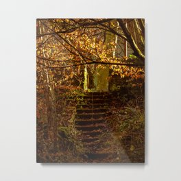 Stepped into the Autumn Light Metal Print