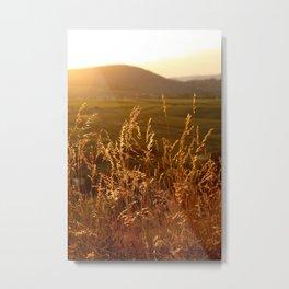 Gold Warm Light - JUSTART © Metal Print