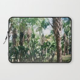 Mexican Palms Laptop Sleeve