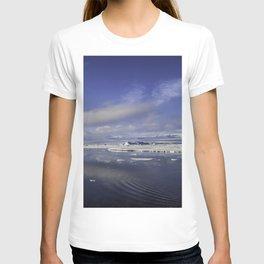 Jokulsarlon Lagoon Beach 11 T-shirt