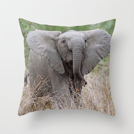 Young elephant - Africa wildlife Throw Pillow