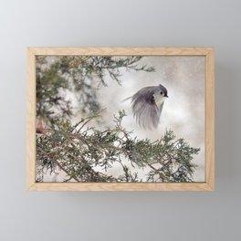 Fly-away Tufted Titmouse Framed Mini Art Print