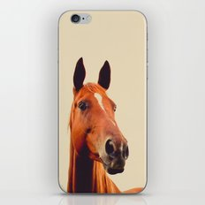 Horse of Eagle Crest  iPhone & iPod Skin